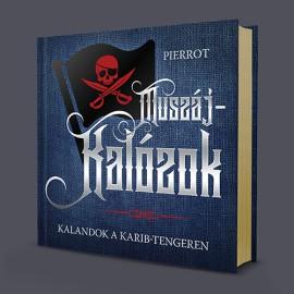 Pierrot: Muszáj-kalózok (könyv)